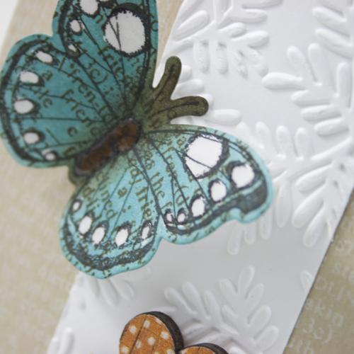 Shari Carroll butterfly close