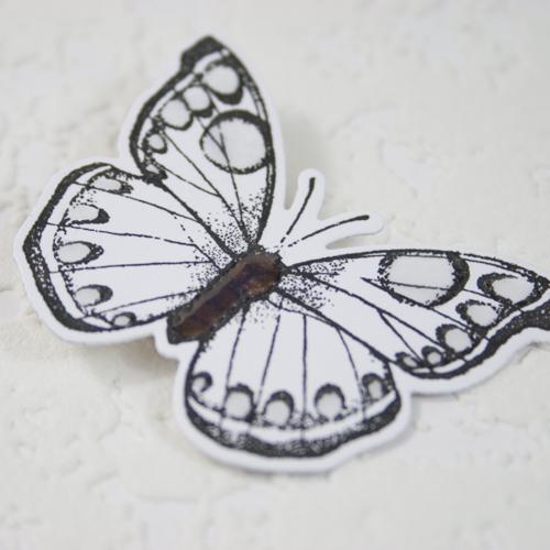 Shari carroll butterfly step 1