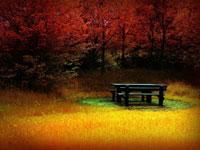 Fall-2012-call