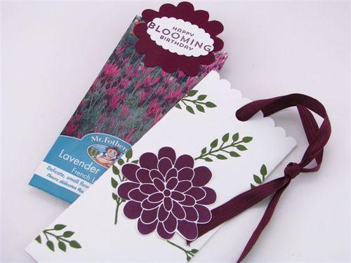 7 Lavender - Linda Yamamoto
