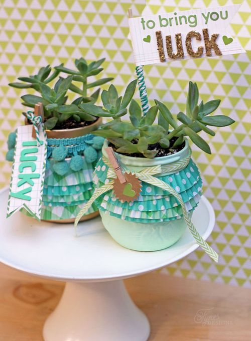 Lucky-plants