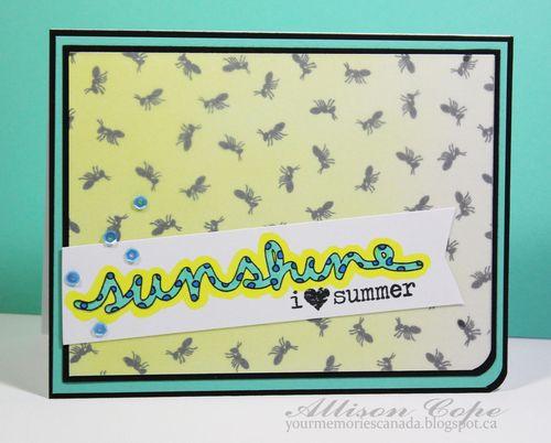 00-2-Sunshine-ACope