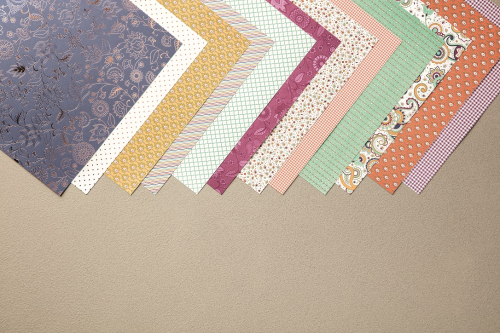 Petals and Paisleys Specialty Designer Series Paper