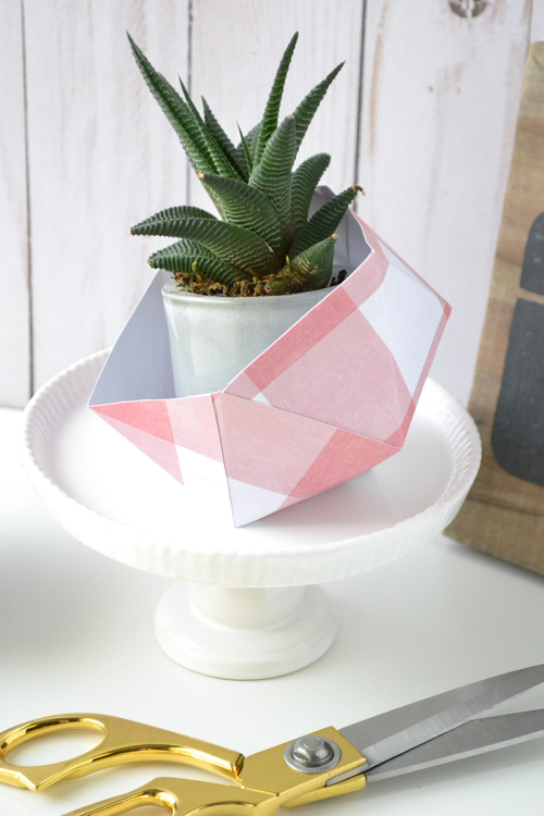 Geometric Planters by Aly Dosdall 3