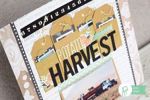 Becki-Adams_Potato-Harvest_6-600x400