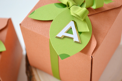 Pumpkin Gift Boxes by Aly Dosdall 3
