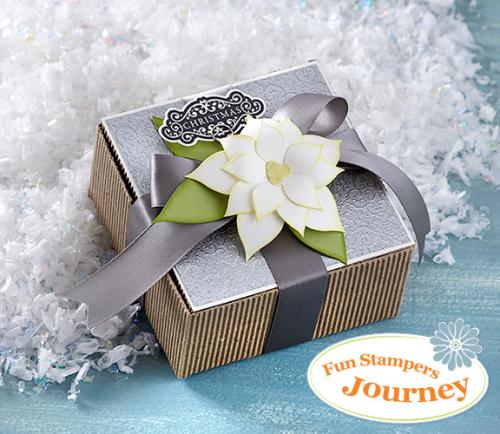 FSJ_giveaway