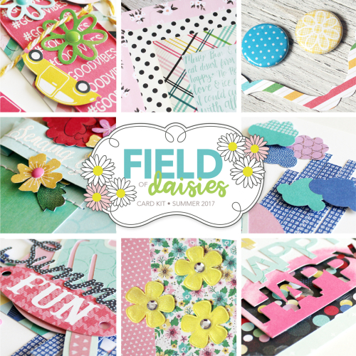 FieldDaisesSQPROMO
